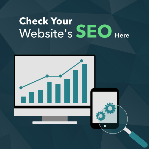 check your seo